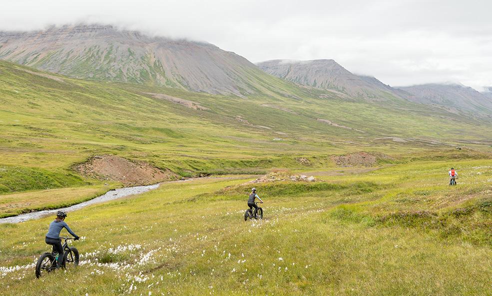 iceland guided mountain biking