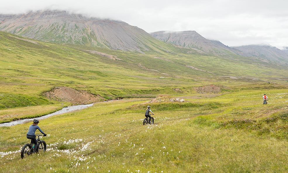 eleven iceland biking grassy