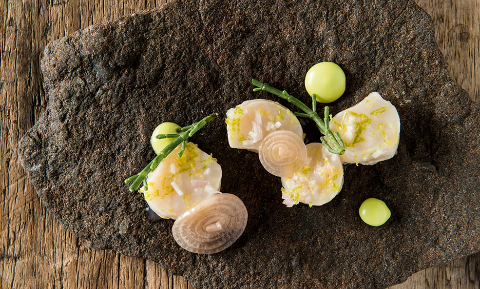 gourmet chef prepared meal iceland