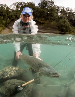 Cedar Lodge angling video